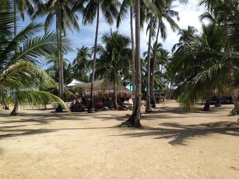 パラワン旅行記2〜パラワンでアイランドホッピングと蛍ツアーに参加する